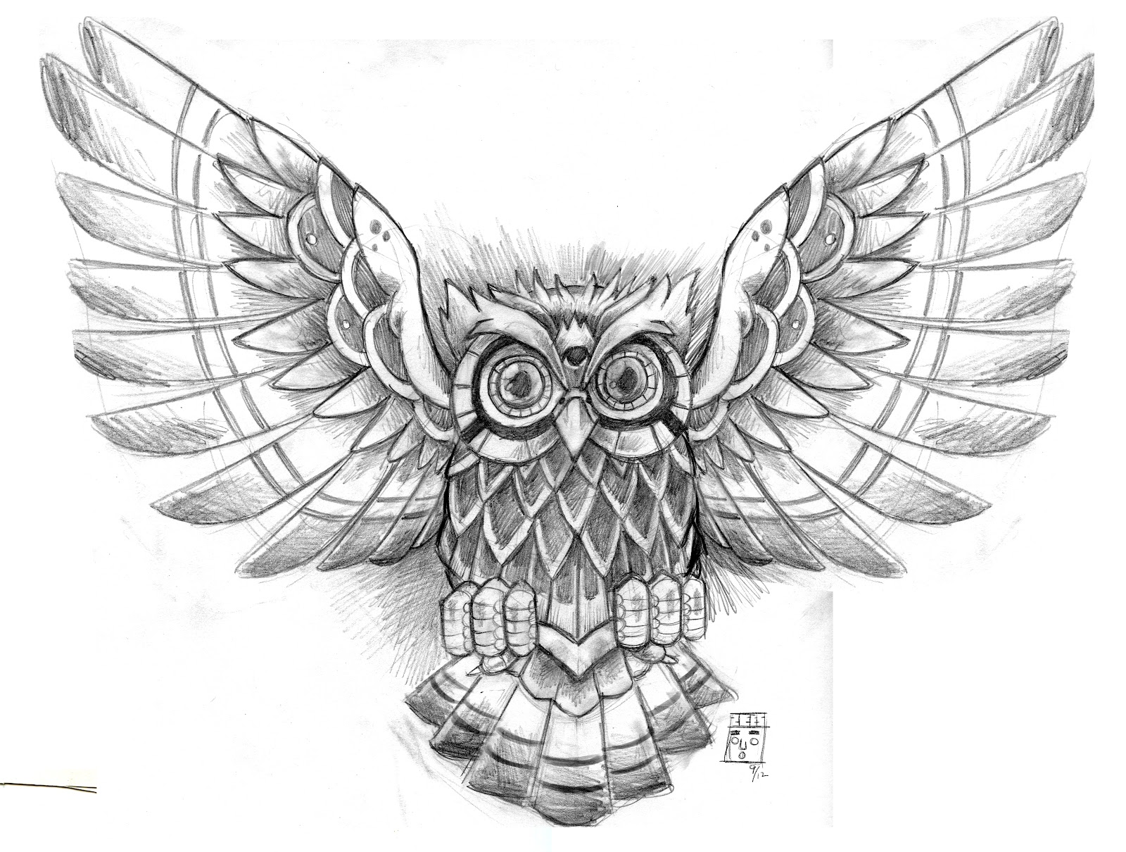 Owl Head Drawing