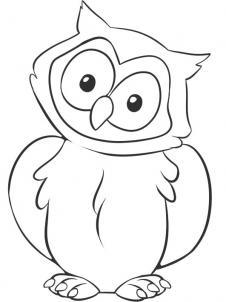 226x302 How To Draw A Owl, Step By Step, Birds, Animals, Free Online