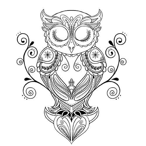 500x500 Owl Drawing Tattoo Elaxsir