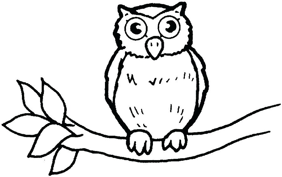 900x566 Owl To Color Owl Drawing Sketches Owls Coloring Book Pdf