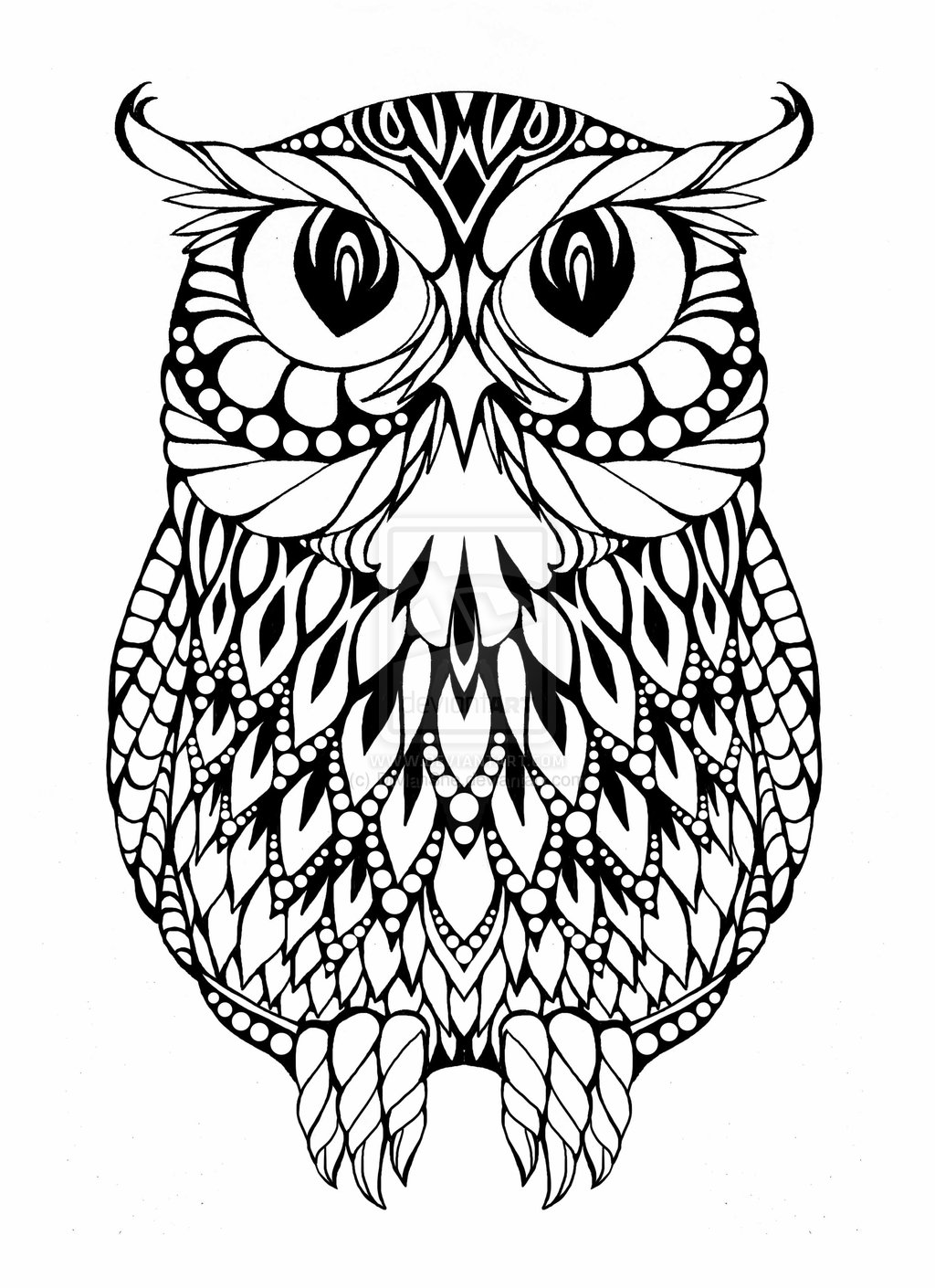 Owl Line Drawing at GetDrawings.com | Free for personal use Owl Line ...