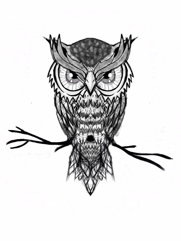 1024x1365 Minervas Owl By Robertargal