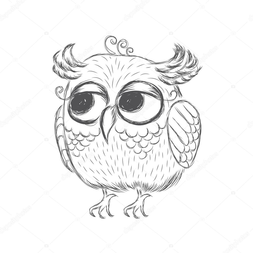 1024x1024 Owl Painted By Hand. A Sketch Of An Owl. Bird Vector, Caricature