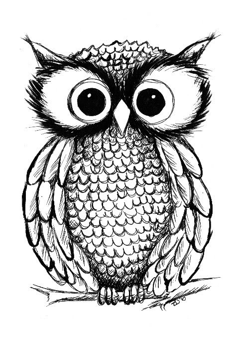 472x686 Pin By Ashley Reid On Tattoos I Like Owl, Drawings