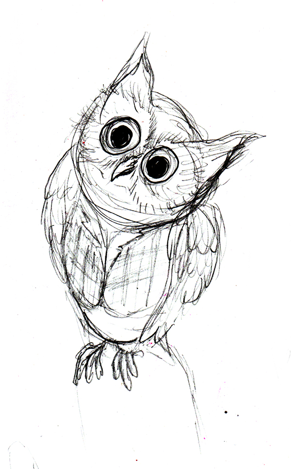 600x966 Sketches Owls On Behance
