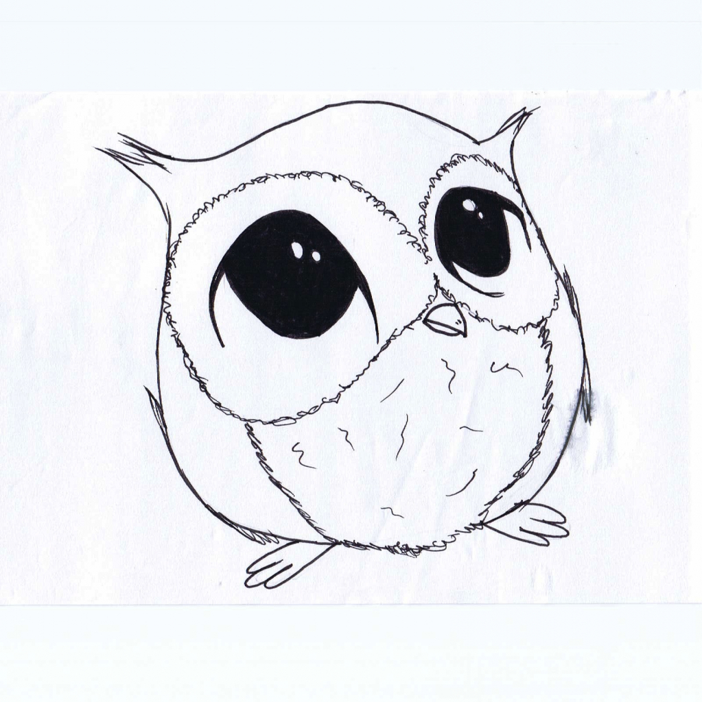 1023x1024 Cute Small Drawings Ideas About Owl Sketch On Owl