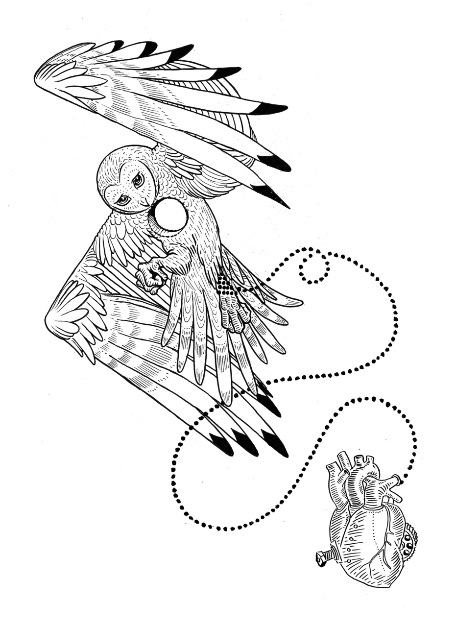Owl Tattoo Line Drawing At Getdrawings Com Free For Personal Use