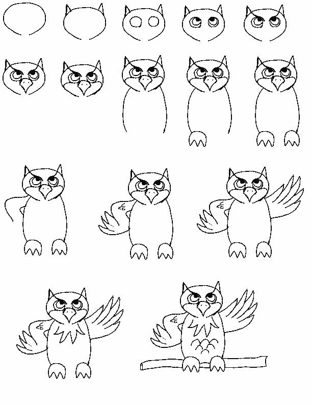 612x792 Pin By Susan Carrell On How To Draw