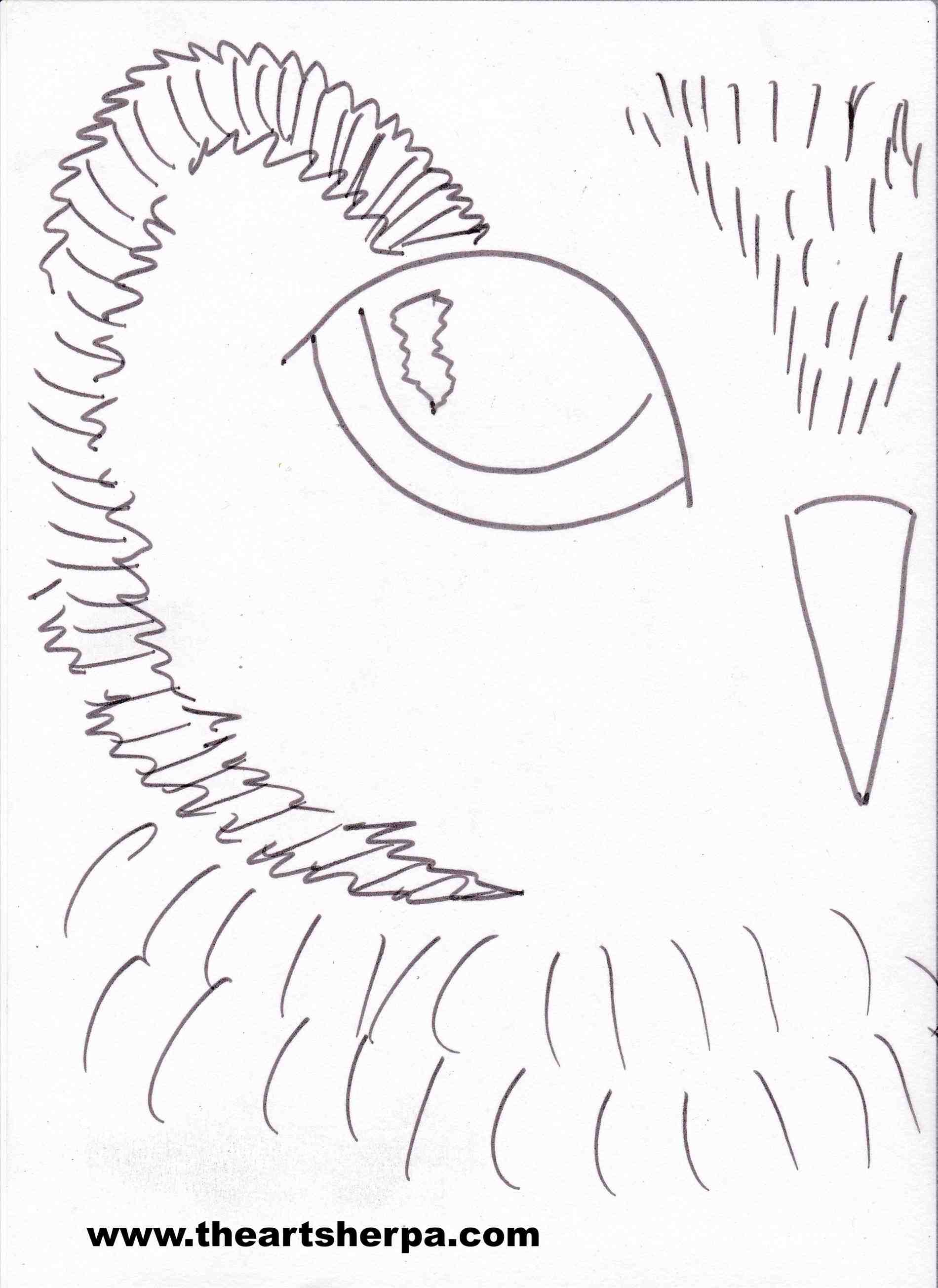 1900x2608 How To Draw A Realistic Owl Step By Step