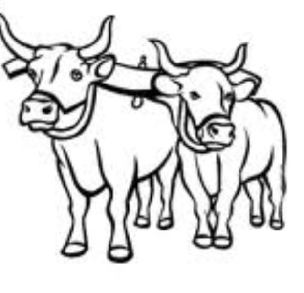 oxen drawing at getdrawings com free for personal use oxen drawing rh getdrawings com  oxen yoke clipart