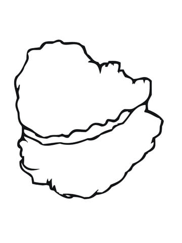 360x480 Oyster Shell Coloring Page Free Printable Coloring Pages