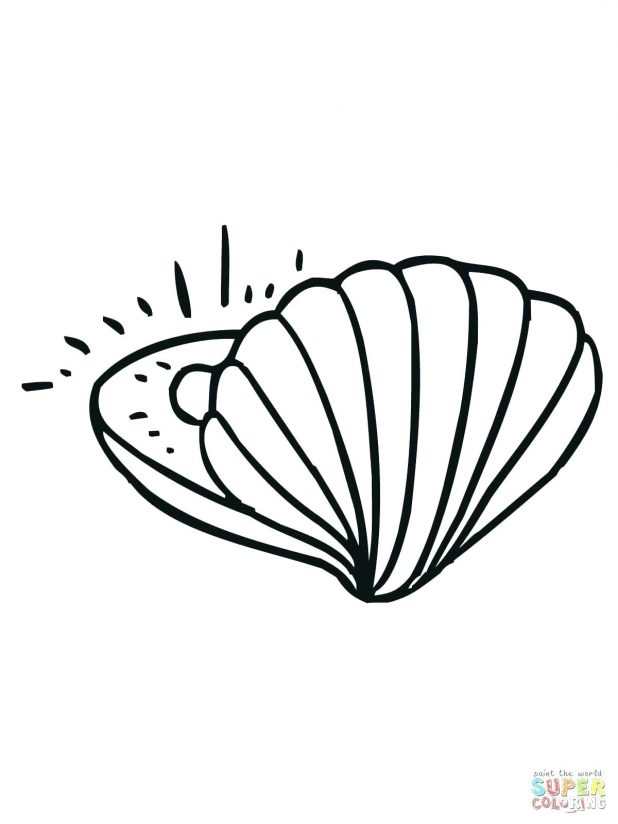 618x824 Pin Pearl Oyster Drawing Clam Coloring Pages For Toddlers On Pin