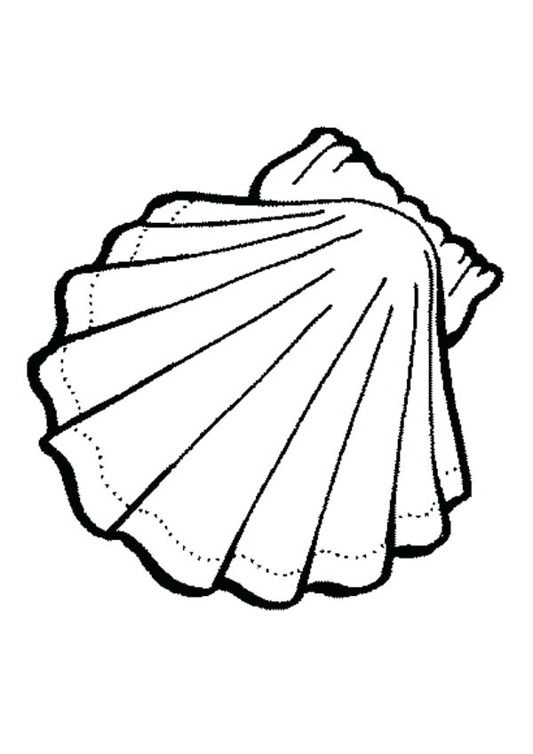 600x849 Shell Clipart Colouring Page Many Interesting Cliparts