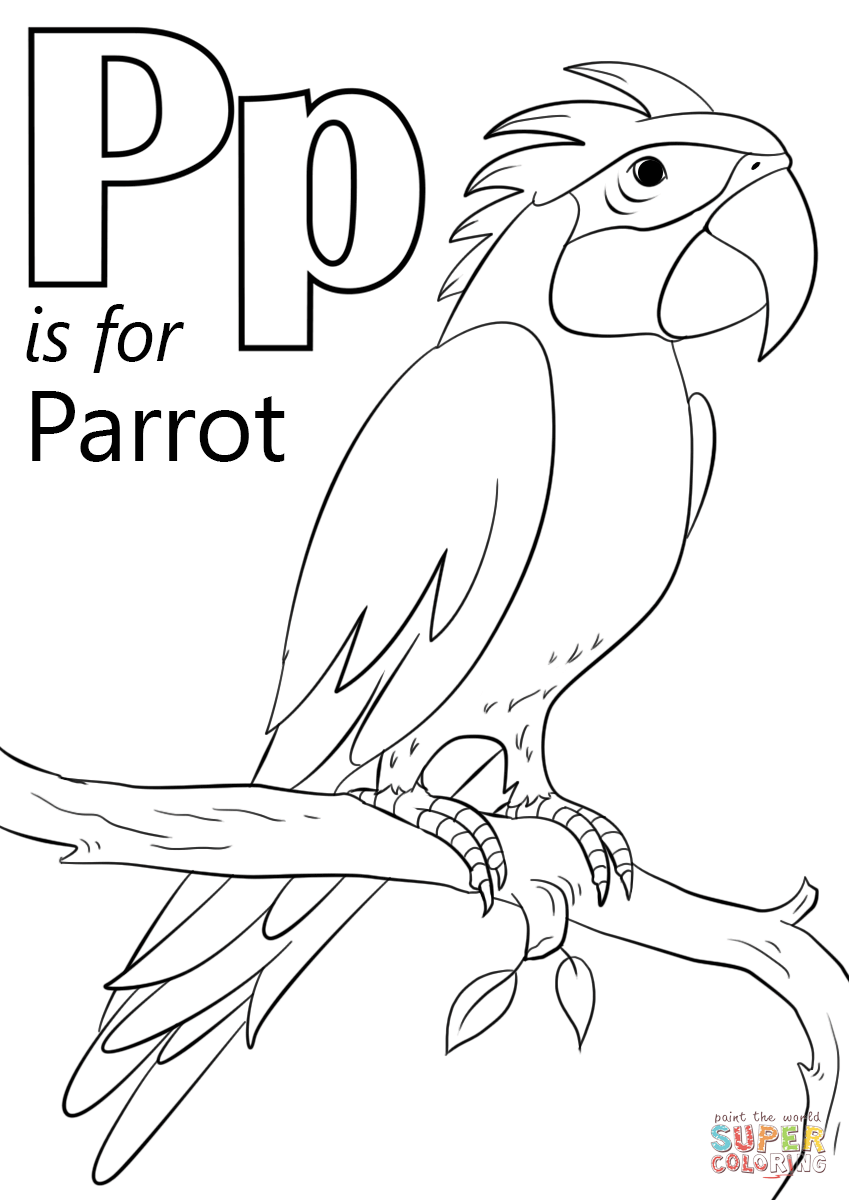 849x1200 Letter P Is For Parrot Coloring Page Free Printable Pages