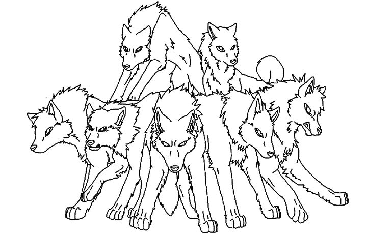 Pack Of Wolves Drawing