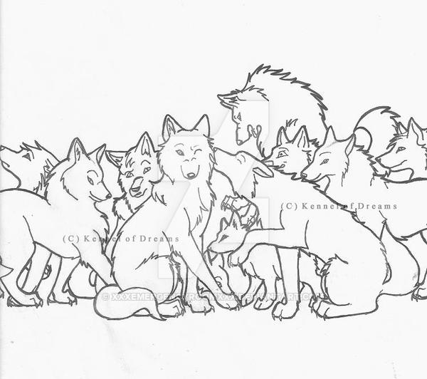 600x532 My Wolf Pack Introduction By Xxxemergencyroomxxx