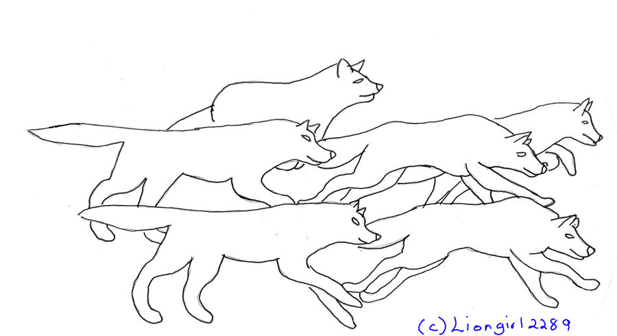 900x490 Running Wolves Lineart By Liongirl2289