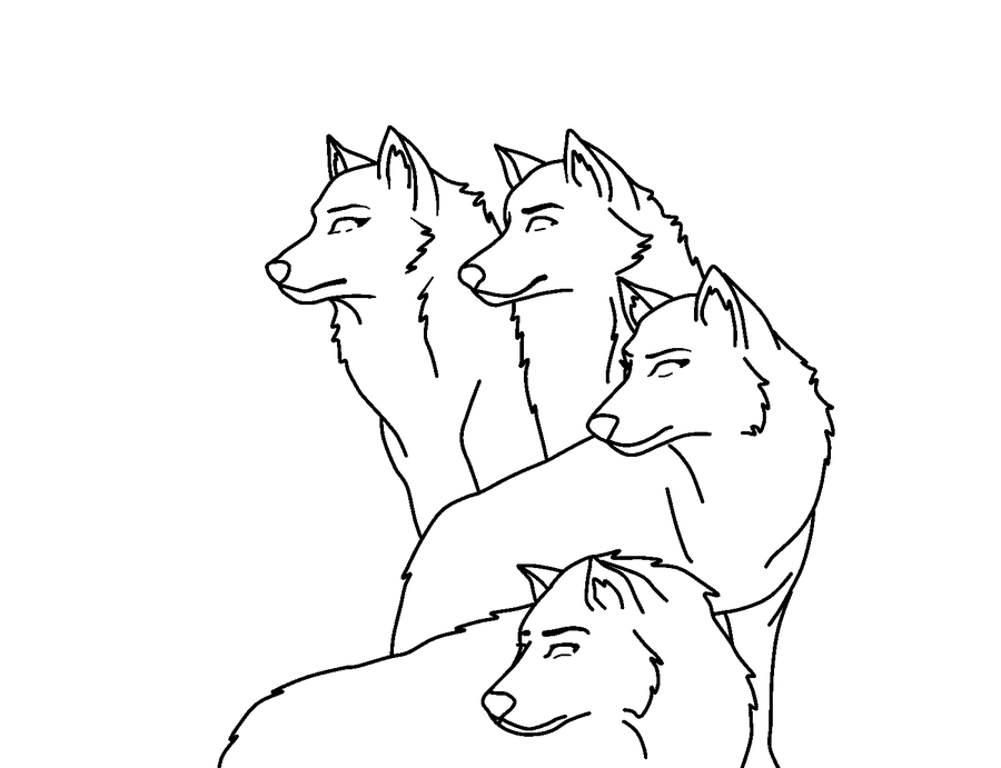900x691 Small Wolf Pack By Shewolf1346
