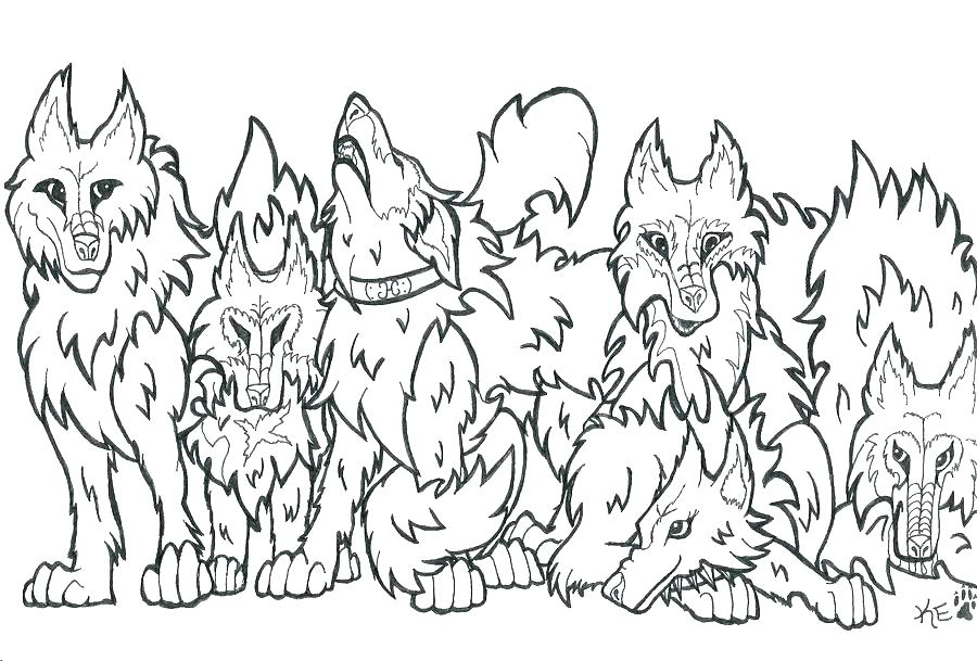 900x609 Wolf Coloring Book And Wolf Realistic 4 89