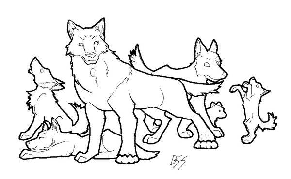 600x370 Wolf Pack Lineart