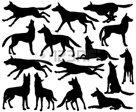 450x371 Wolf Pack Stock Photos. Royalty Free Business Images