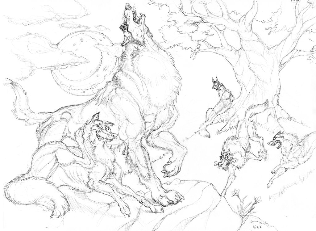 1024x748 Wolf Pack By Chalicothere