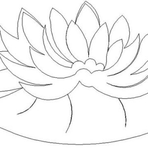 300x300 Drawing Frog On Lily Pad Coloring Page Color Luna