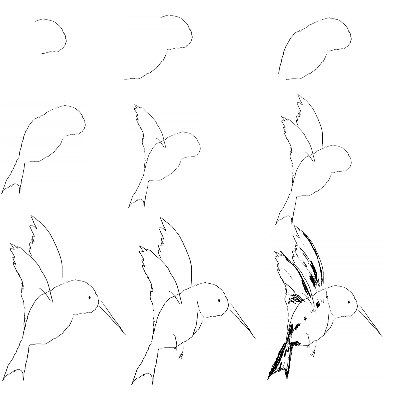 400x400 How To Paint Hummingbirds Flying Down On How To Draw