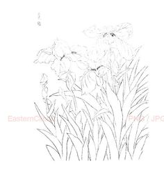 236x265 Chinese Line Drawing 09 Png Digital Download By Easternclipart