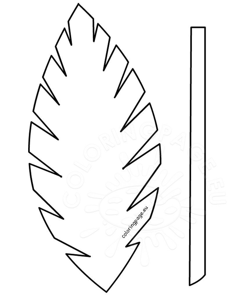 826x1030 Lovely Palm Tree Leaves Coloring Pages Ideas