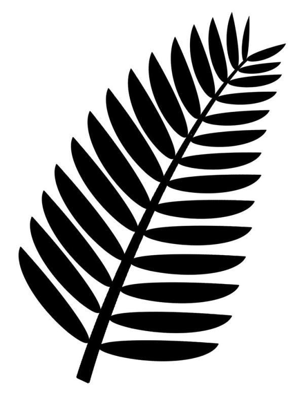 600x800 Palm Tree Leaves Clip Art