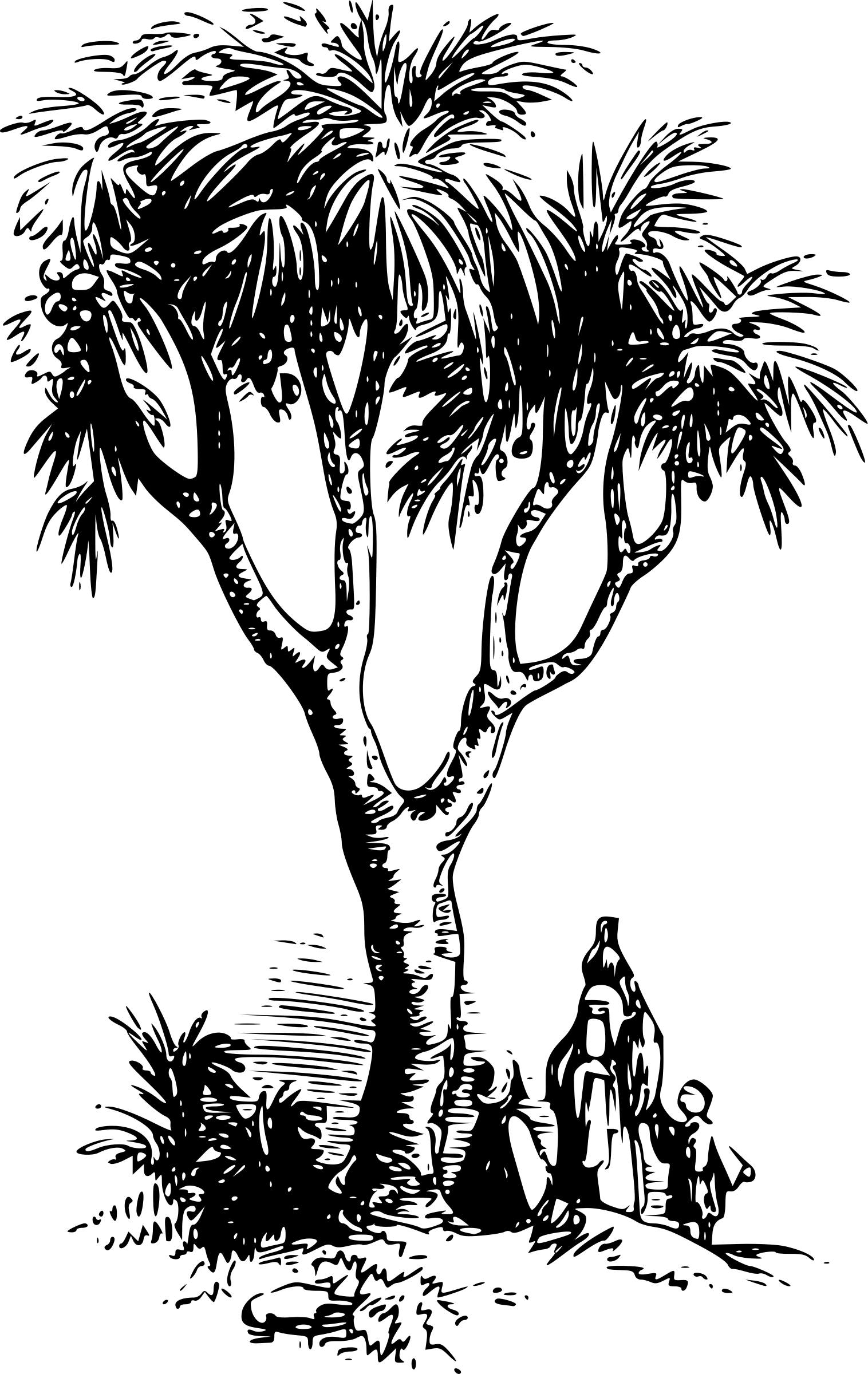 1516x2400 Clipart