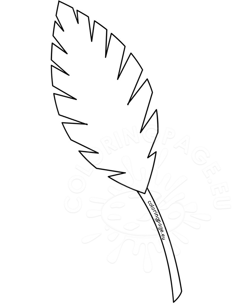 826x1030 Palm Leaves Coloring Pages