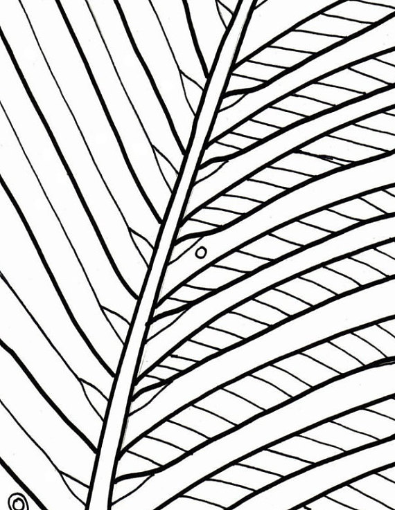 570x737 Palm Tree Coloring Page Beach Art Digital Download Adult