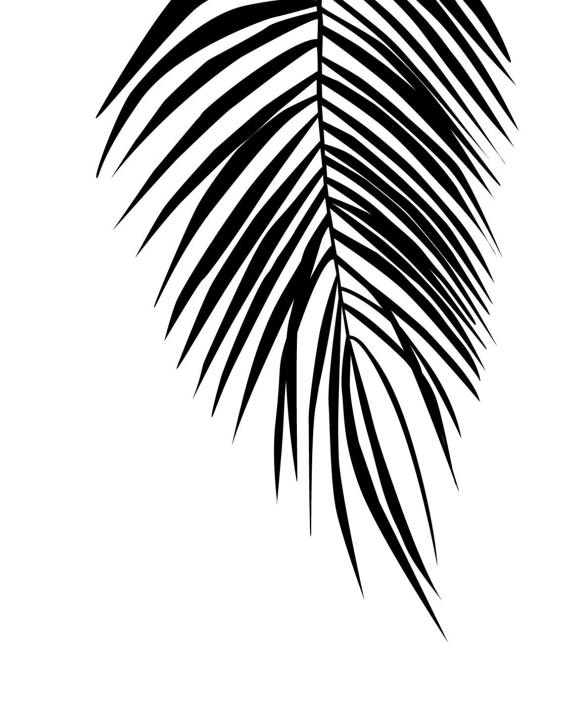 570x713 Tropical Wall Poster Gifts Under 15 Tropical Leaf Print