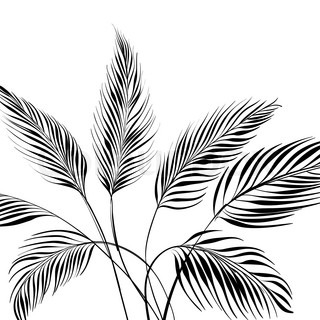 320x320 Tropical Palm Leaves Set.vector Leaf,silhouette Drawing In Vintage