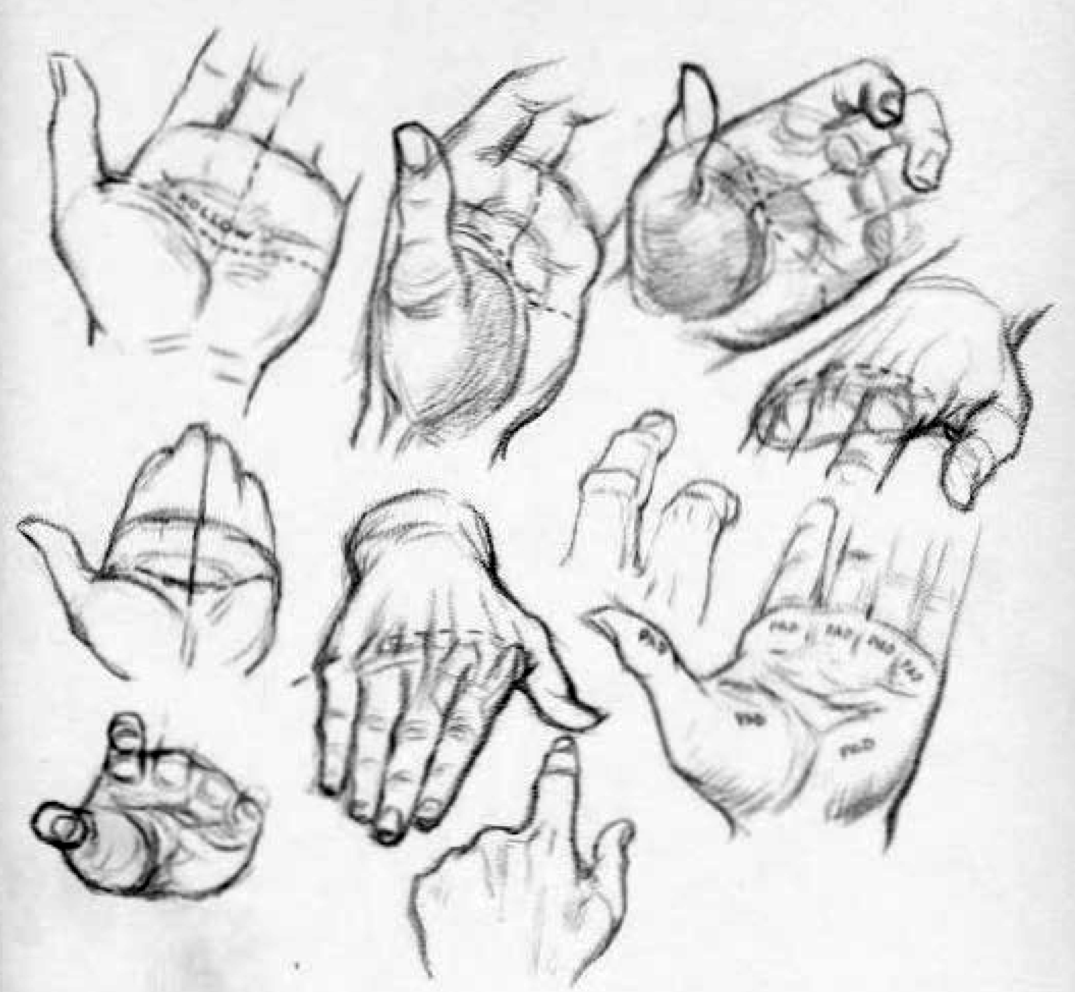 2199x2029 How To Draw The Palms Of The Hands Or The Hollows Of The Palms