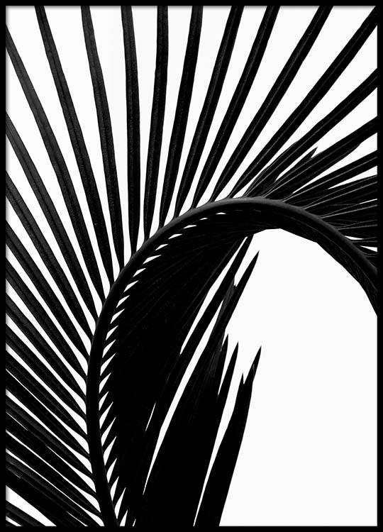 540x750 Black Palm Leaf Two Poster