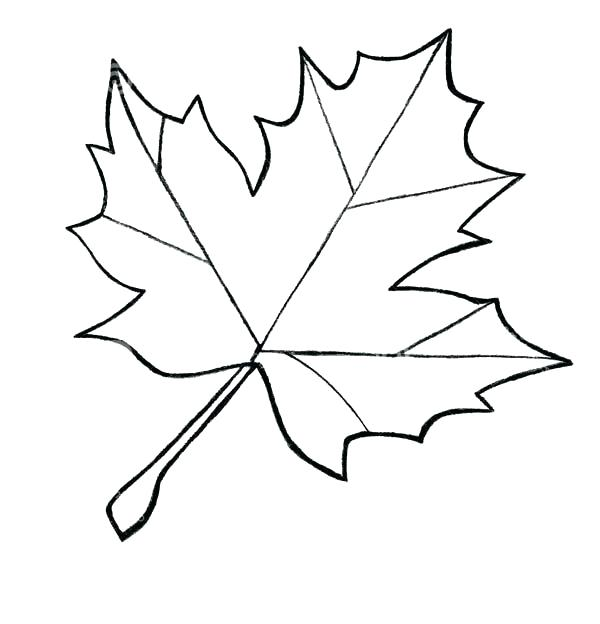 600x624 Coloring Page Leaf Printable Color Page Digital Coloring Sheet Zen