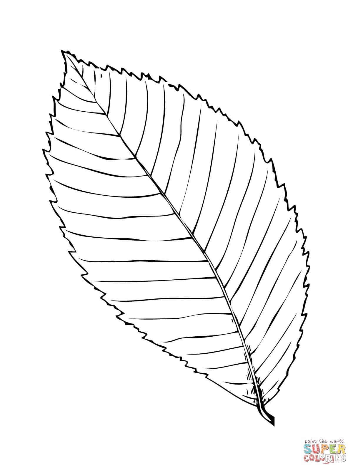 1200x1600 Palm Fronds Coloring Pages