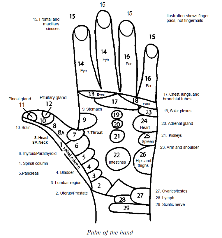 762x816 Reflex Zones In Palms Of The Hand Learn Self Healing Techniques