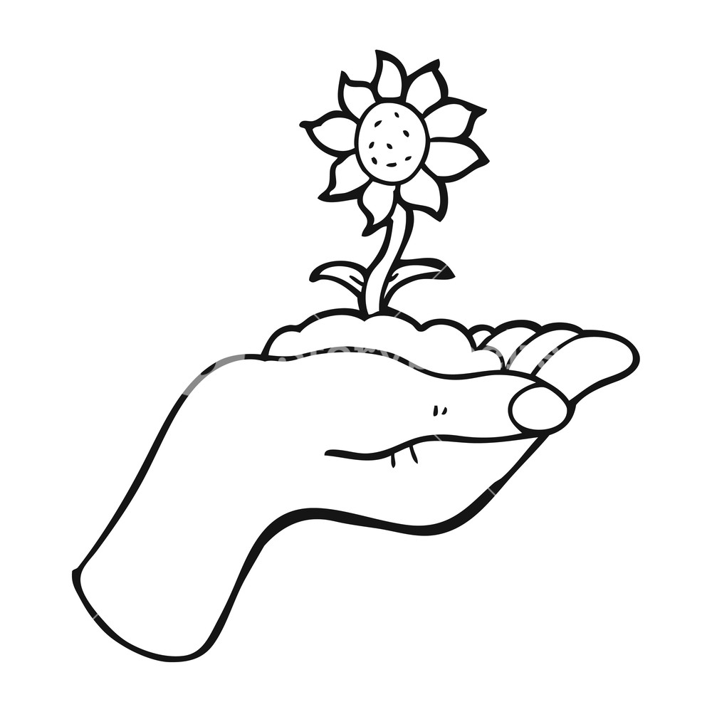 1000x1000 Freehand Drawn Black And White Cartoon Flower Growing In Palm