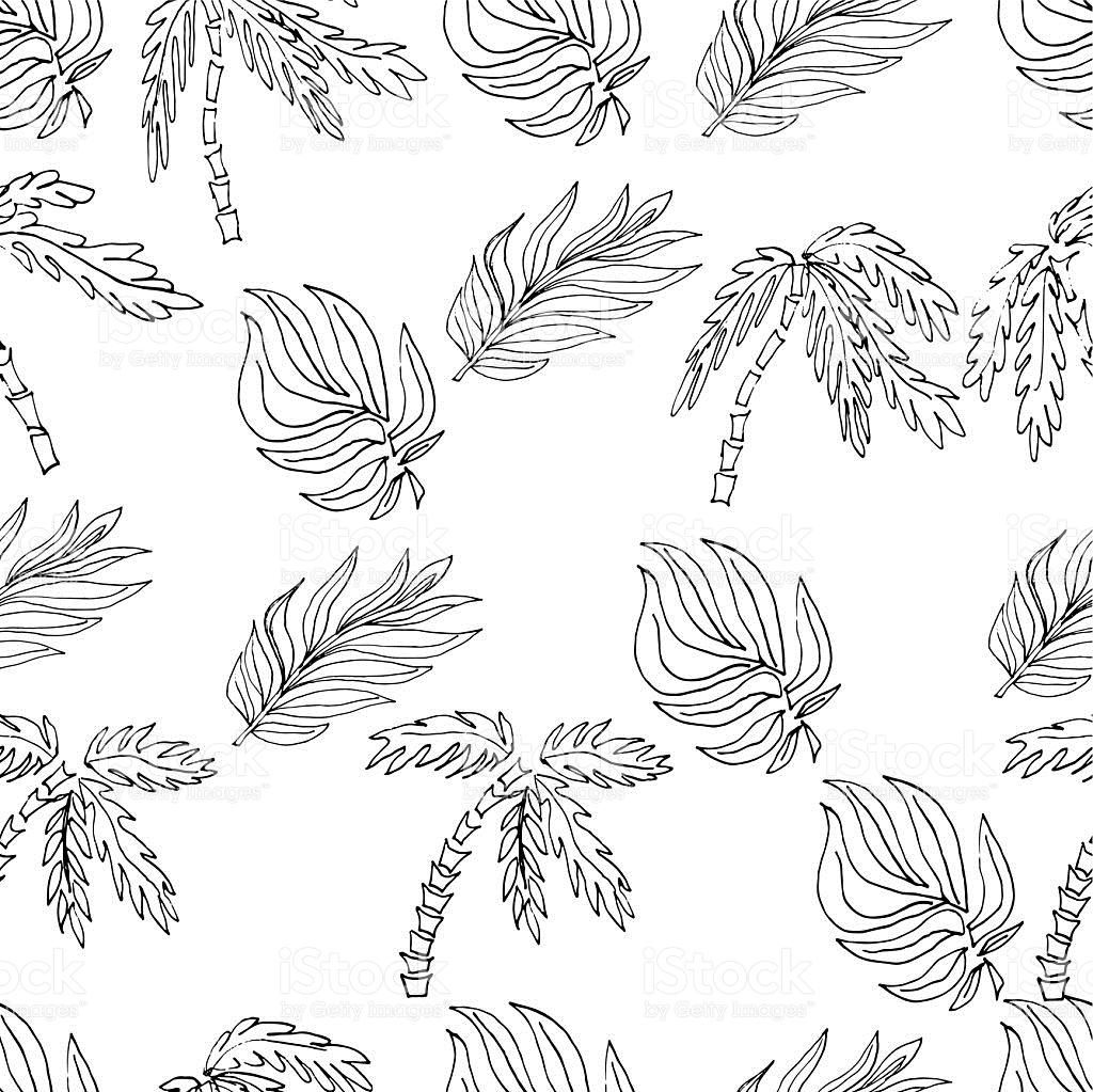 1024x1023 Drawn Leaf Plant