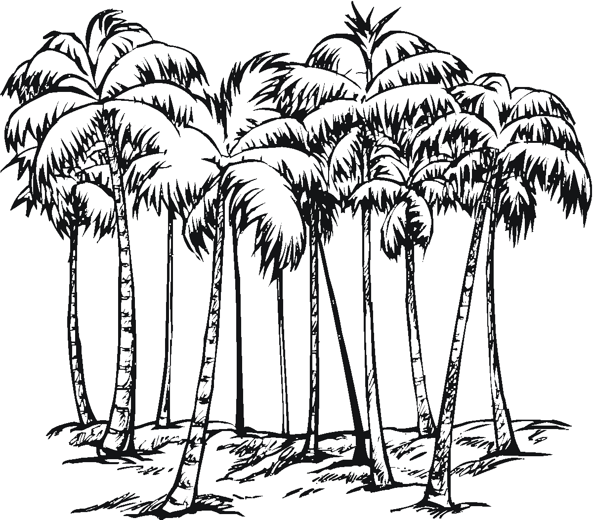 1200x1052 Odd Palm Tree Coloring Page Adult Pages Of Trees And The Beach