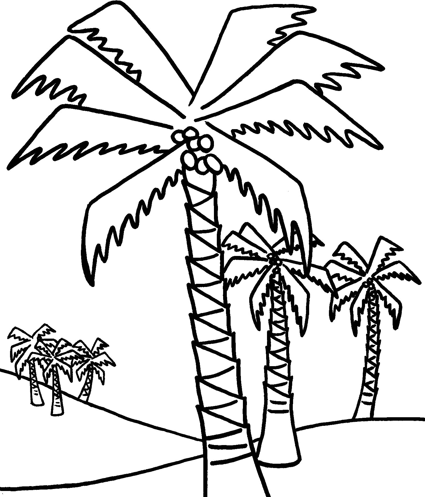 1482x1732 Palm Trees Color Pages