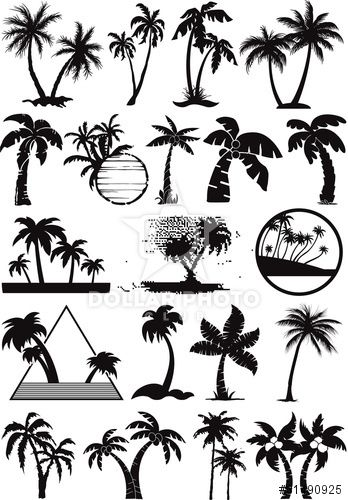 348x500 Palm And Coconut Trees Vector Silhouette