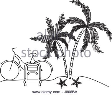380x320 Palm Trees Next To Water Stock Photo, Royalty Free Image 12746926