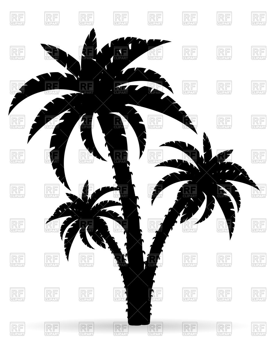 933x1200 Cartoon Palm Tree Black Outline Silhouette Royalty Free Vector