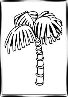 Palm Tree Drawing At Getdrawings Com Free For Personal Use Palm