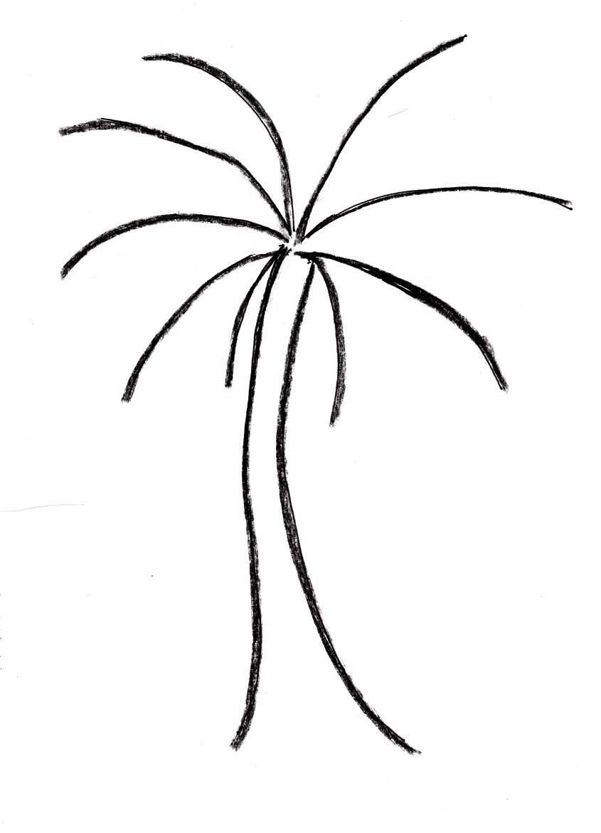 845x1171 Palm Tree Drawing Samantha Bell Within Easy To Draw Trees